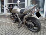6909_100323_1269381177.jpg